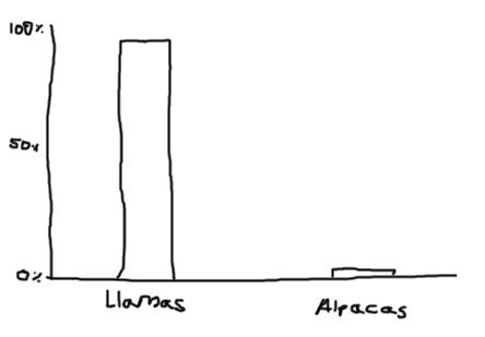 Llamas are better than alpacas, new poll shows