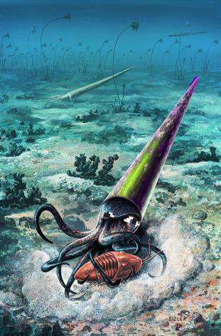 The Shiftocone, thought to have gone extinct from a global catastrophe, actually went extinct from...