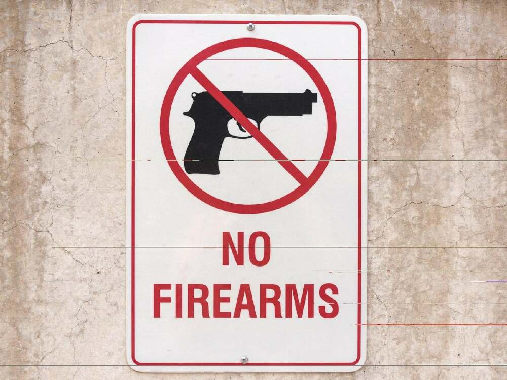 Midnight Sky outlaws civilian ownership of firearms as the Citizen's demanded.